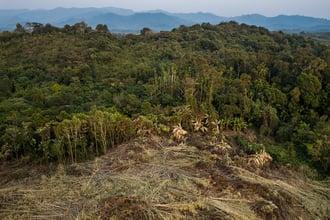 © Hkun Lat  WWF-US (2)
